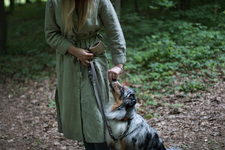 Hundeblog_dogsoulmate20201-123